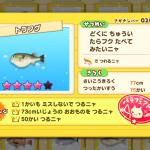 トラフグ(さかナンバー020)はエビルアーで釣る!魚影シルエット特徴あり、釣り大物73cm以上、チャレンジ回数50回以上