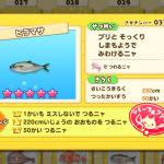 ヒラマサ(さかナンバー033)はにじのさかなルアーで釣る!魚影シルエット特徴あり、釣り大物220cm以上、チャレンジ回数50回以上