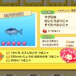 ミナミマグロ(さかナンバー029)はカニルアーで釣る!魚影シルエット特徴あり、釣り大物220cm以上、チャレンジ回数50回以上