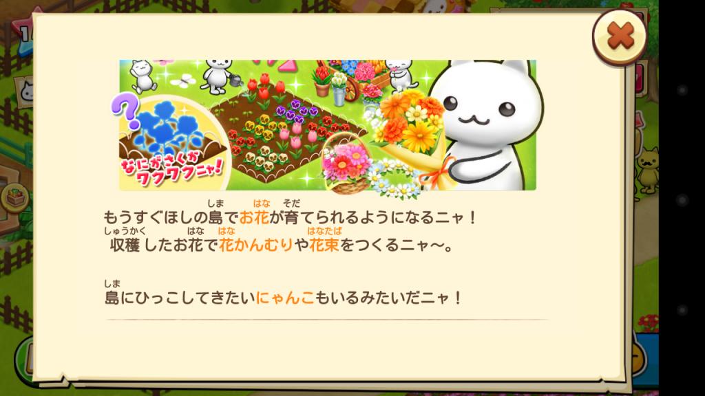 ほしの島のにゃんこお花畑内容